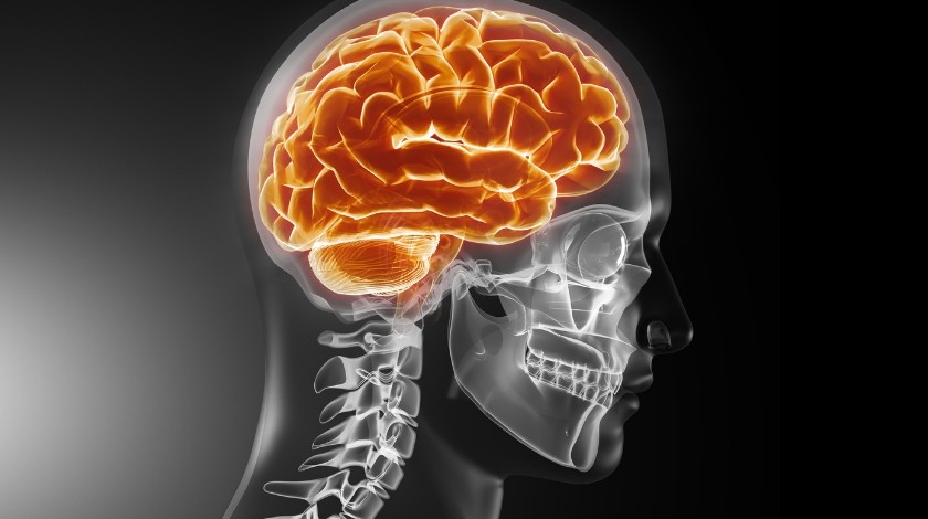 Brain cancer dataset made freely accessible to global