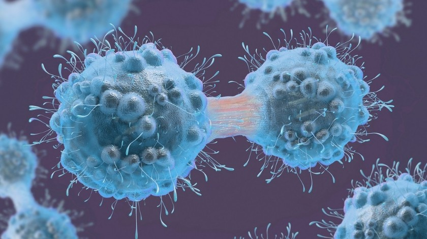 Tumor-targeting protein could advance personalized cancer therapy