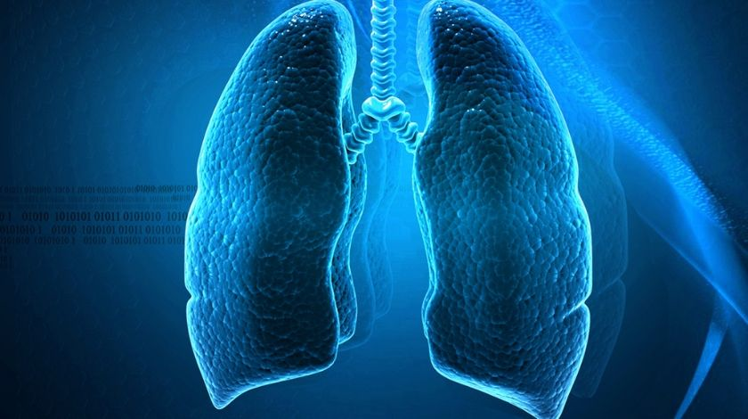 lung cancer lung