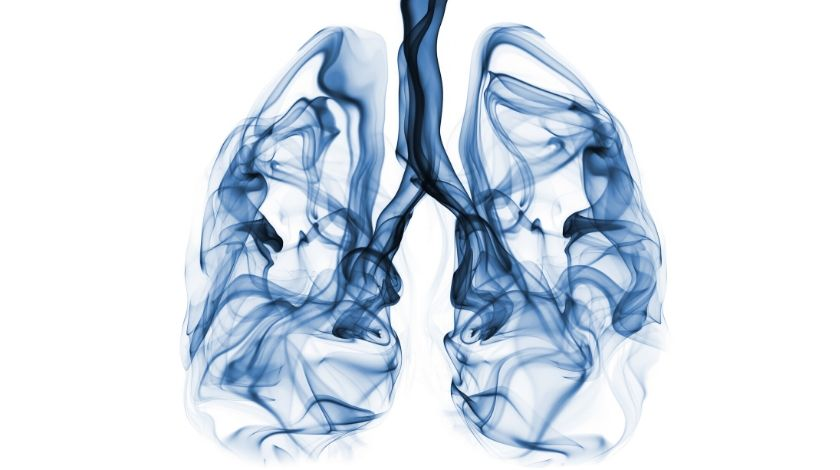 Is it too late to quit? Healthy cells could reduce the risk of lung cancer for ex-smokers